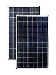 Solární panel WSP-255P6 Winaico